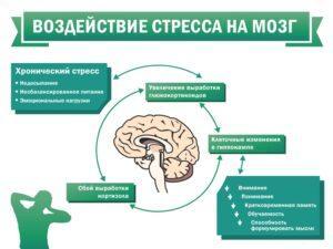 Стресс и криодинамика
